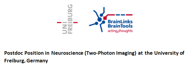 Postdoc Position in Neuroscience (Two-Photon Imaging