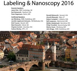 Labeling and Nanoscopy 2016